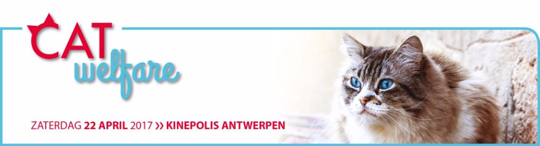 Cat Welfare Antwerpen (22/04)