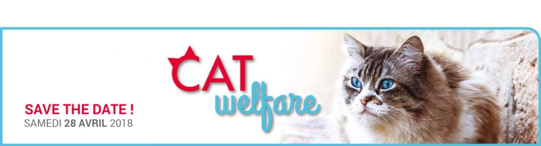 Cat Welfare Braine-l'Alleud (25/03)